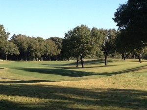 Tree lined Fairway at Colonial